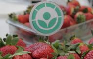 Se aprobó la ampliación de alimentos irradiados en el Código Alimentario Argentino