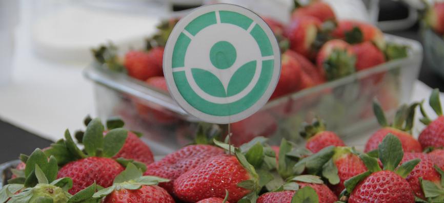 Irradiación de alimentos para prolongar la duración de frutas y hortalizas