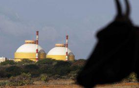 La construcción de los reactores 5 y 6 de la central india de Kudankulam ya está en marcha