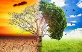 Costa Rica, Chile y Argentina a la cabeza de la acción climática en la región