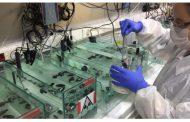 Los átomos de las almejas nos cuentan sobre los peligros de la acidificación de los océanos