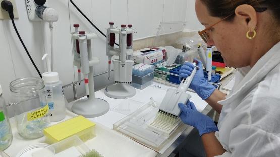CUBA: primer laboratorio regional capaz de detectar biotoxinas con técnicas nucleares