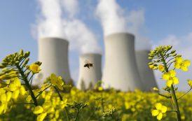 VIDEO: Ex Subsecretario del Departamento de Energía de EE.UU explica por qué la energía nuclear es la clave para combatir el cambio climático