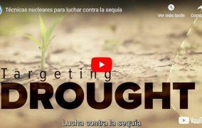 Video: Técnicas nucleares para luchar contra la sequía