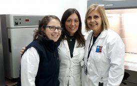 Argentina y Chile: La ARN ofreció capacitación en dosimetría biológica a la CCHEN