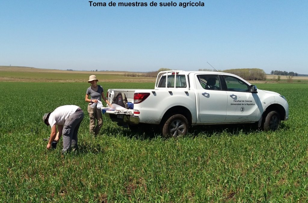 Técnicas nucleares e isotópicas para evaluar y monitorear la degradación y sedimentación del suelo