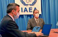 Concluyeron los seminarios web del OIEA sobre Cooperación Técnica Regional