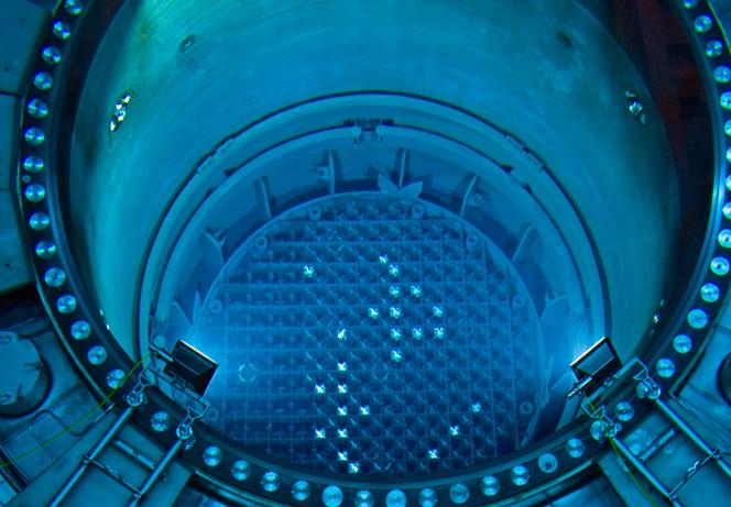 Dentro de los reactores nucleares hay vida