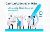 Pasantías en el OIEA: postulaciones hasta el 12 de octubre